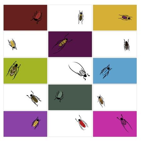 cigarra: Diseño tarjetas con croquis escarabajos