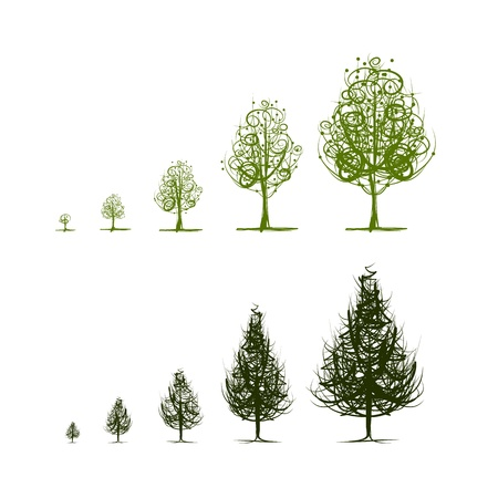 huge tree: Stages of growing trees