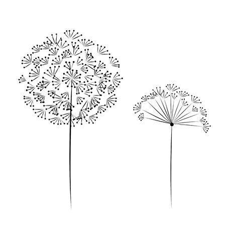 blowing dandelion: Dandelion flower