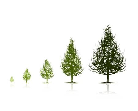 Etapas de los árboles que crecen Ilustración de vector