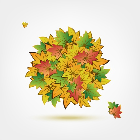 top down: Autumn bouquet made from leaves for your design