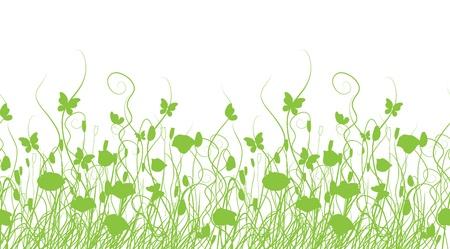 campo de margaritas: Prado verde, patr?n transparente para su dise?o Vectores