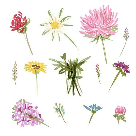 Set of garden flowers, sketch for your design Illustration