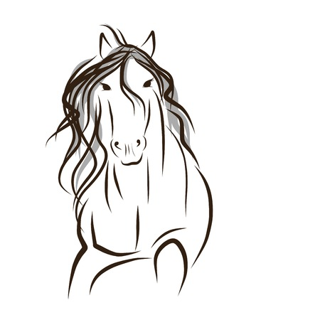 Horse sketch for your design. Symbol of 2014 year Illustration