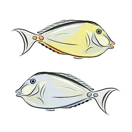 peces caricatura: Boceto de pescado para su diseño