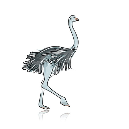 Ostrich sketch for your design Vector