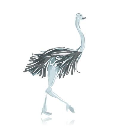 emu: Avestruz negro boceto de su diseño Vectores