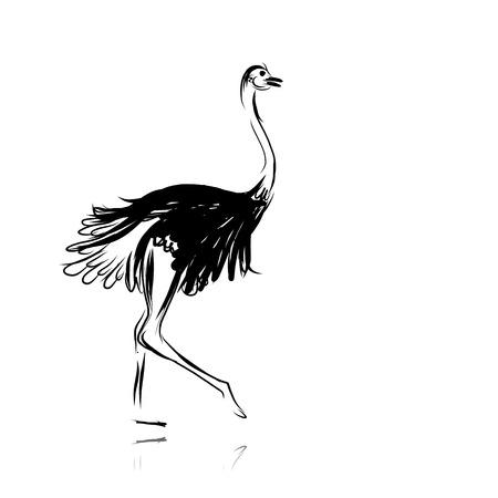 Struisvogel schets zwart voor uw ontwerp