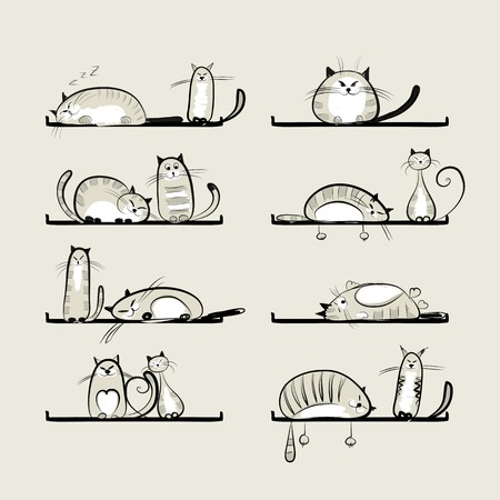 Funny cats on shelves for your design Illustration