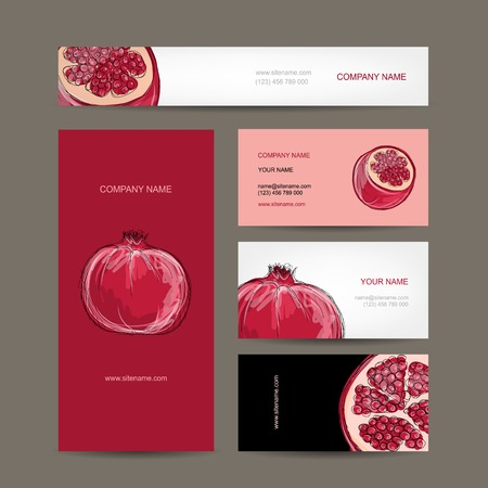 Set of business cards design, pomegranate sketch Vector