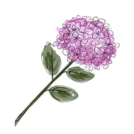 Sketch of hydrangea flower for your design Illustration