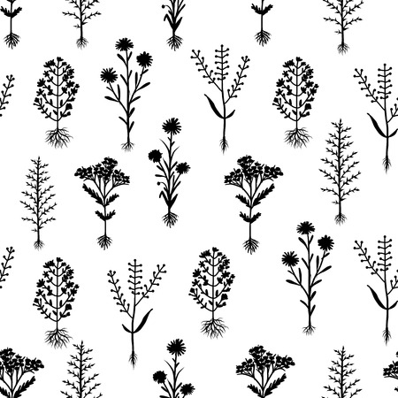 herbarium: Herbarium flowers with roots, seamless pattern