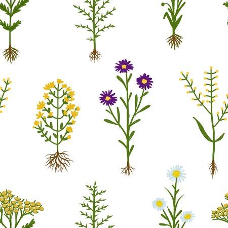 raíz de planta: Flores herbario con raíces, sin fisuras patrón