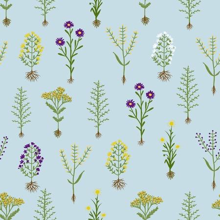 herbarium: Herbarium flowers with roots, seamless pattern