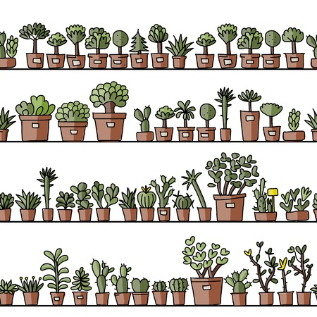 potted plant cactus: Shelves with cactus in pots, seamless pattern design