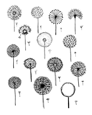 Dandelions collection, sketch fro your design Иллюстрация