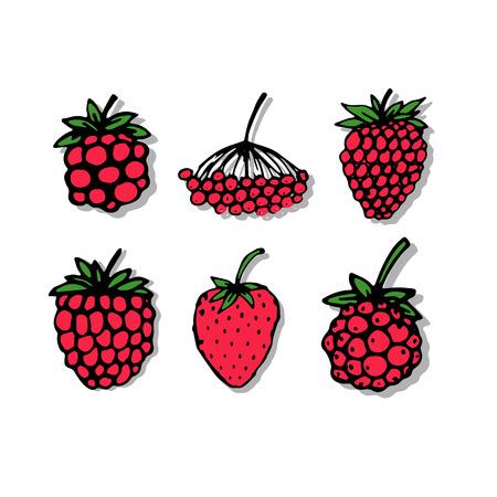 frutos rojos: Bayas rojas, boceto de su dise�o Vectores