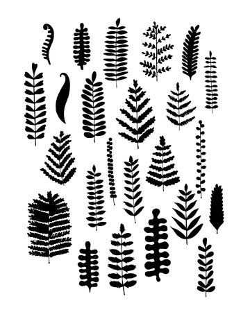 Leaf set, sketch for your design. Vector illustration