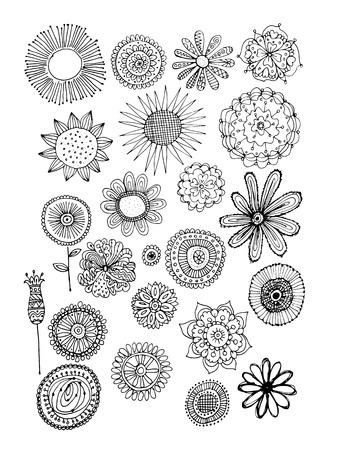 꽃 컬렉션, 디자인을위한 스케치. 벡터 일러스트 레이 션 일러스트