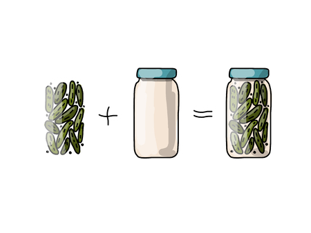 pickled: Bank of pickled cucumber, sketch for your design. Vector illustration Illustration