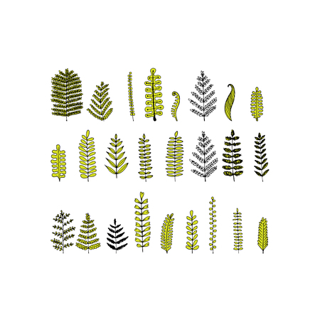 nature: Leaf set, sketch for your design. Vector illustration