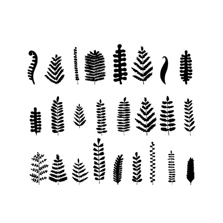 Leaf set, sketch for your design. Vector illustration