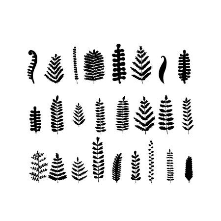 Blad set, schets voor uw ontwerp. Vector illustratie