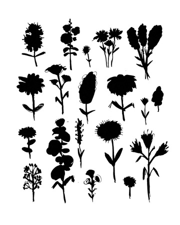 pollination: Collection of wildflowers, sketch fro your design. Vector illustration Illustration