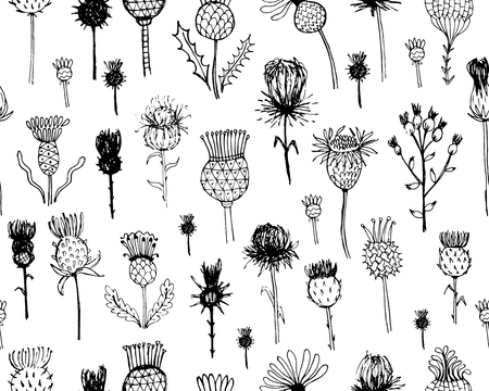prickle: Agrimony plants seamless pattern, sketch for your design. Vector illustration