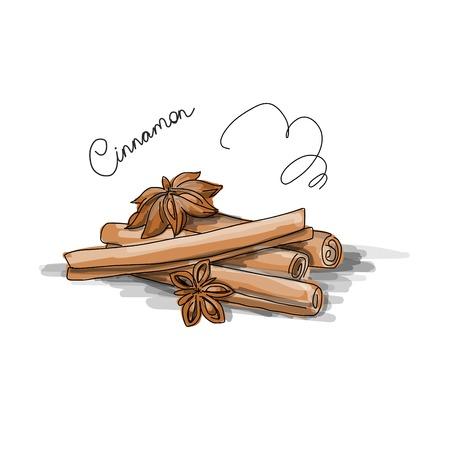 allspice: Cinnamon, sketch for your design. Vector illustration Illustration