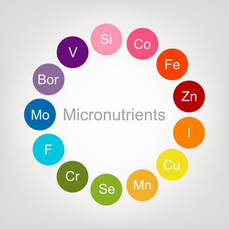 colección de vitaminas para su diseño. ilustración vectorial