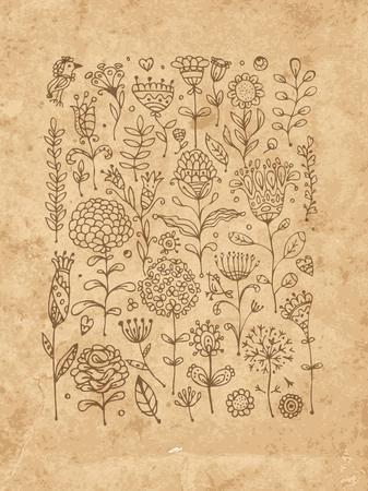 hojas antiguas: Esbozo patr�n floral para su dise�o. Ilustraci�n vectorial