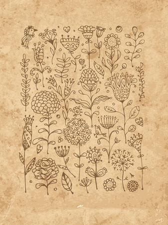 paper old: Floral pattern sketch for your design. Vector illustration