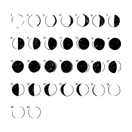 phases: Phases of the Moon, sketch for your design. Vector illustration