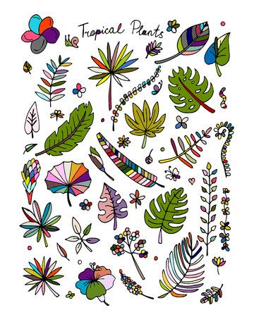tropical plants: Tropical plants, sketch for your design. Vector illustration