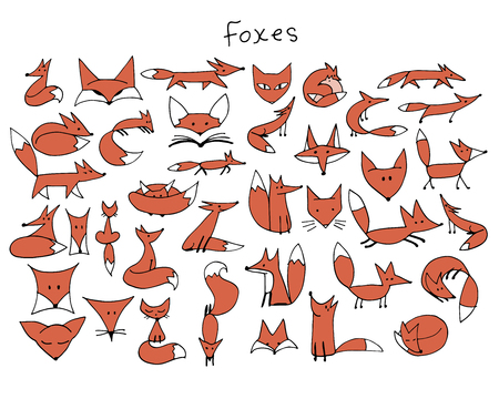 Cute fox sketch, collection for your design. Vector illustration