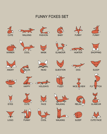 Fox icons, collection for your design. Vector illustration