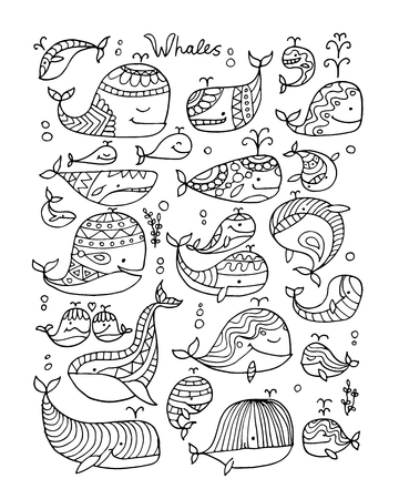 Whales collection, sketch for your design. Vector illustration