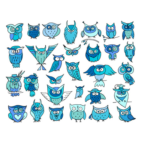 Set of funny owl collection for your design. Vector illustration