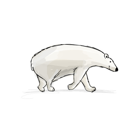 to and fro: Polar bear, sketch fro your design. Vector illustration