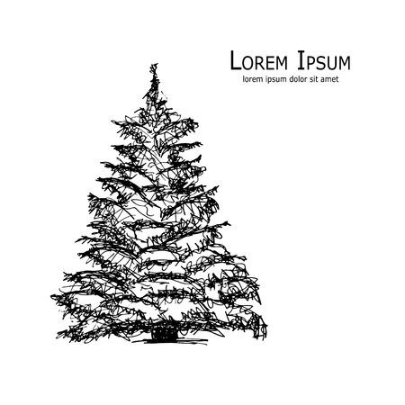 Pine tree, art sketch for your design. Vector illustration