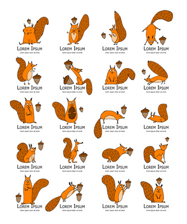 Funny squirrel with nut, collection for your design. Vector illustration