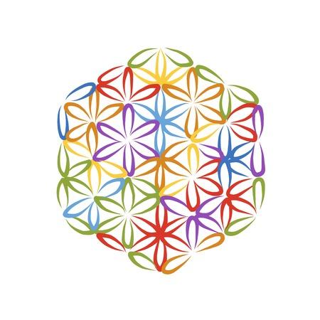 Flower of Life, sketch for your design, vector illustration 矢量图像