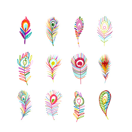 illustration collection: Peacock feather collection for your design.  illustration