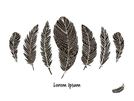 Collection de plumes pour votre design. illustration Banque d'images - 68558073