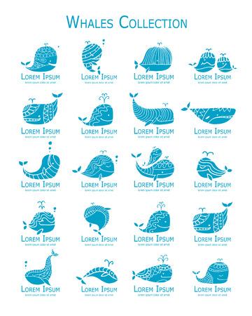 Wieloryby logo zestaw, szkic do projektowania Logo