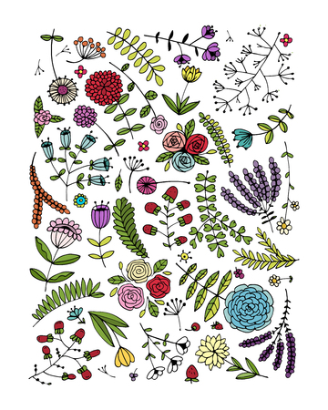 abstract illustration: Floral pattern, sketch for your design