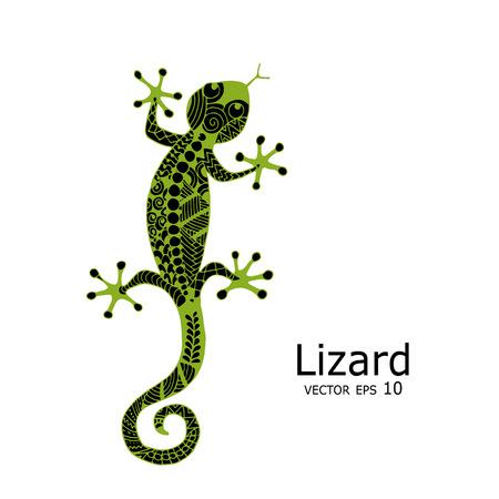 Croquis lézard vert, zenart pour votre conception Banque d'images - 76634027