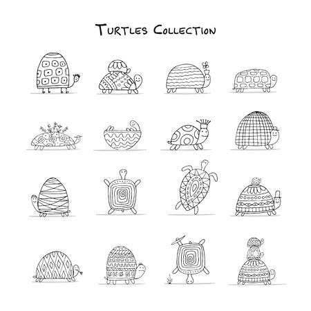conjunto tortugas divertido, boceto de su diseño