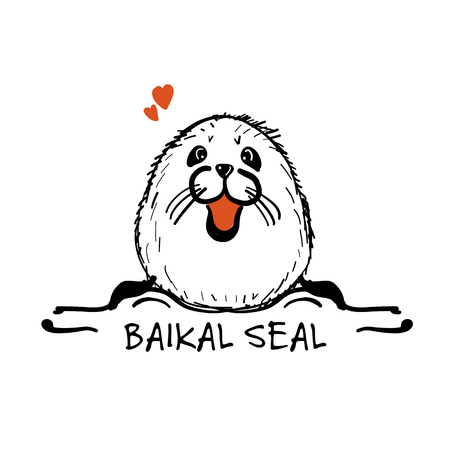 Baikal-Siegel, Skizze für Ihr Design Standard-Bild - 84955064